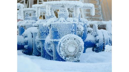 Valves for arctic conditions